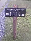 040725_123401.jpg
